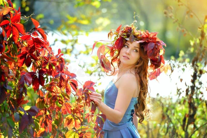 Flicka i en krans av sidor, i en blå klänning som står nära de röda höstbuskarna på en solig dag som poserar och ser över din sho royaltyfri foto