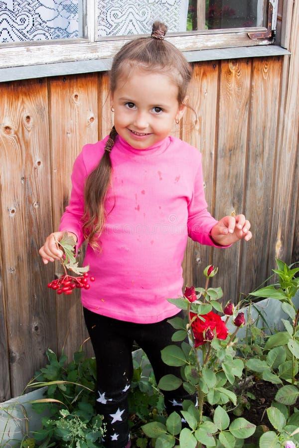 Flicka i en rabatt med röda rosor fotografering för bildbyråer