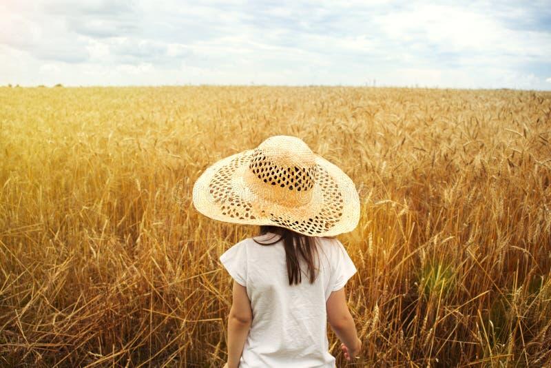 Flicka i ett fält på en solnedgångbakgrund royaltyfria bilder