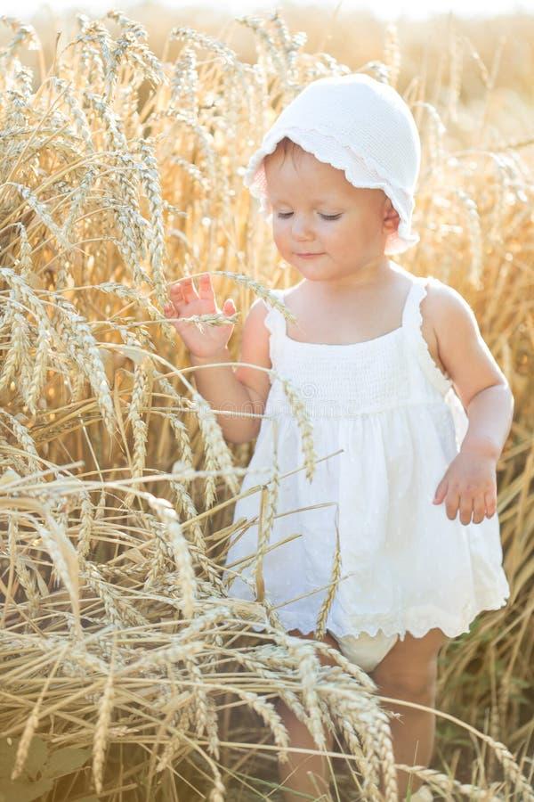 Flicka i ett vetefält arkivbilder