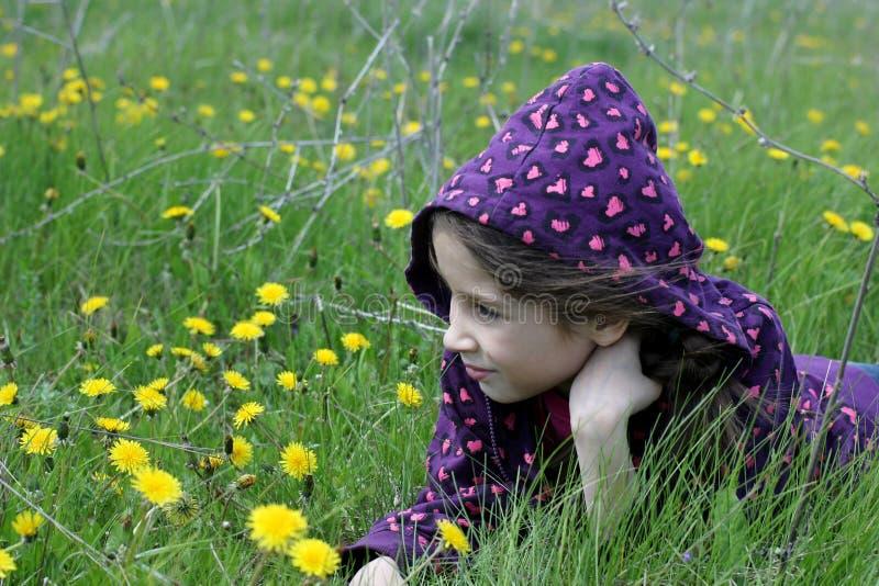Flicka i fält med maskrosor royaltyfria bilder
