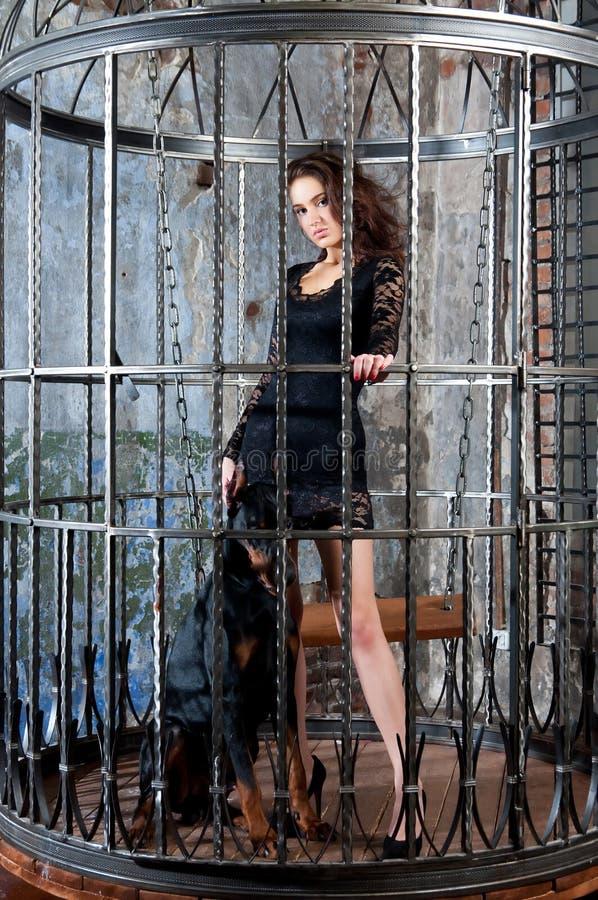 Flicka i mtallic bur med hunden svart klänning royaltyfria foton