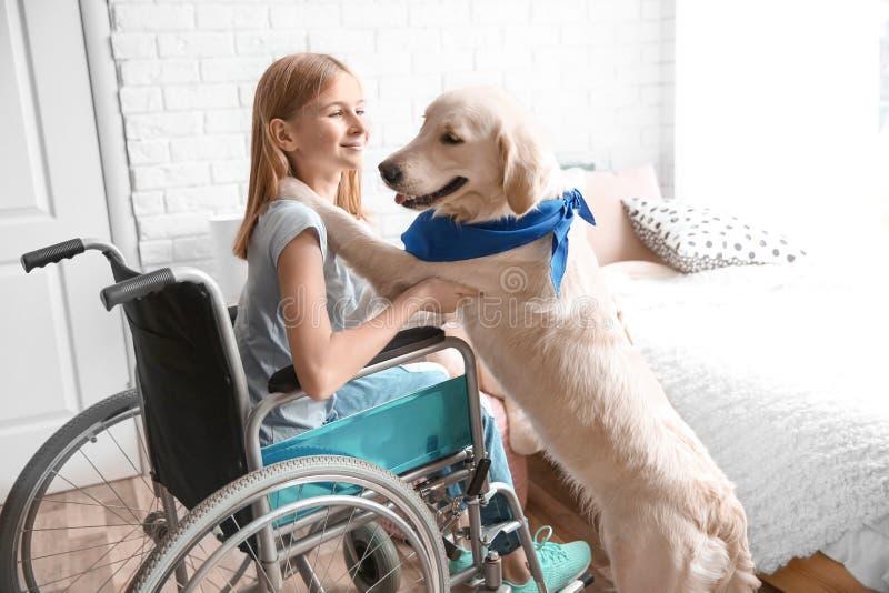 Flicka i rullstol med den tjänste- hunden fotografering för bildbyråer