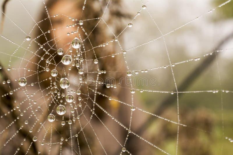 Flicka i spiderweb arkivbilder