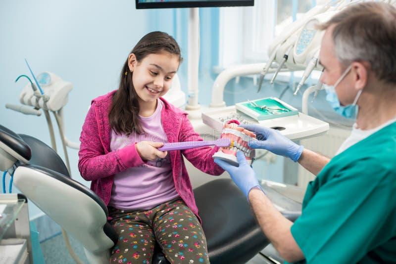 Flicka i tandläkarestol som utbildar riktigt tand-borsta av hennes pediatriska tandläkare, genom att använda den tand- käkemodell royaltyfria foton