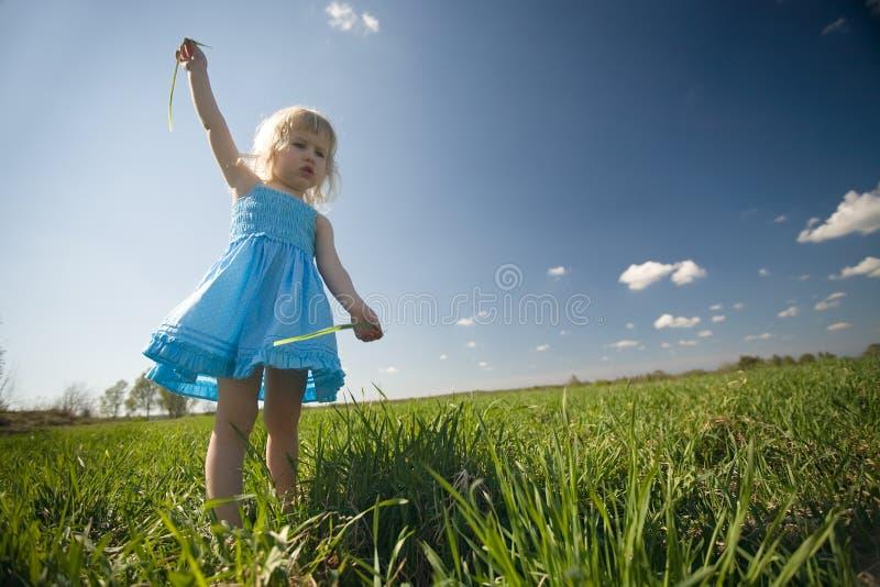 flicka little solig äng arkivfoto