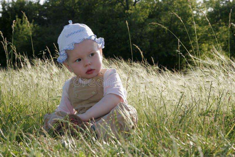 flicka little solig äng arkivbild