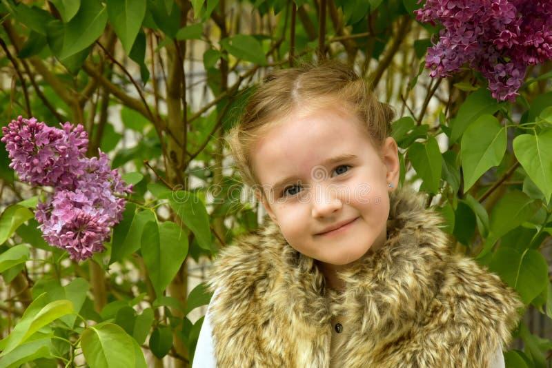 flicka little som är perky royaltyfri fotografi
