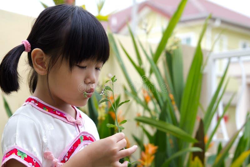 flicka little som är utomhus- arkivbild