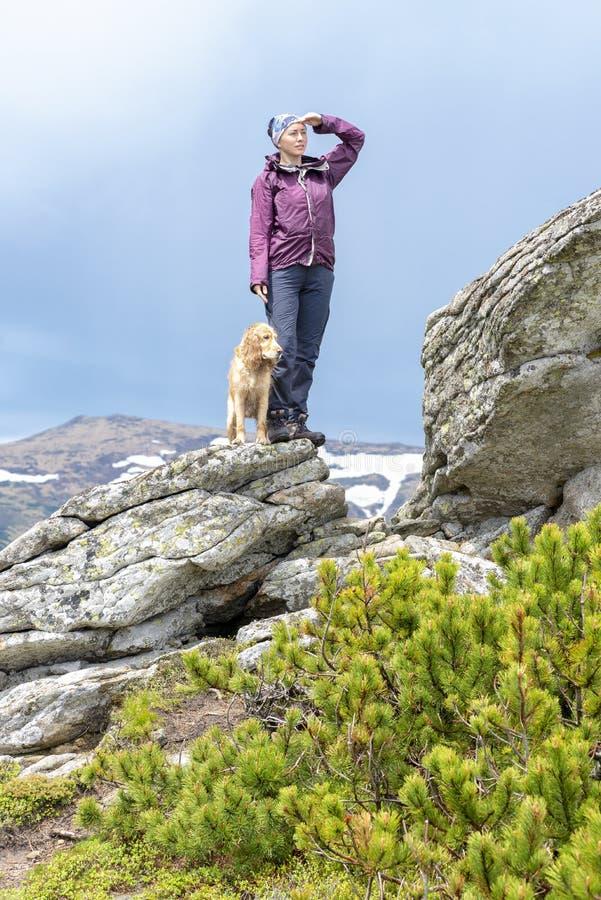 Flicka med en hund i bergen, Carpathians, royaltyfri fotografi