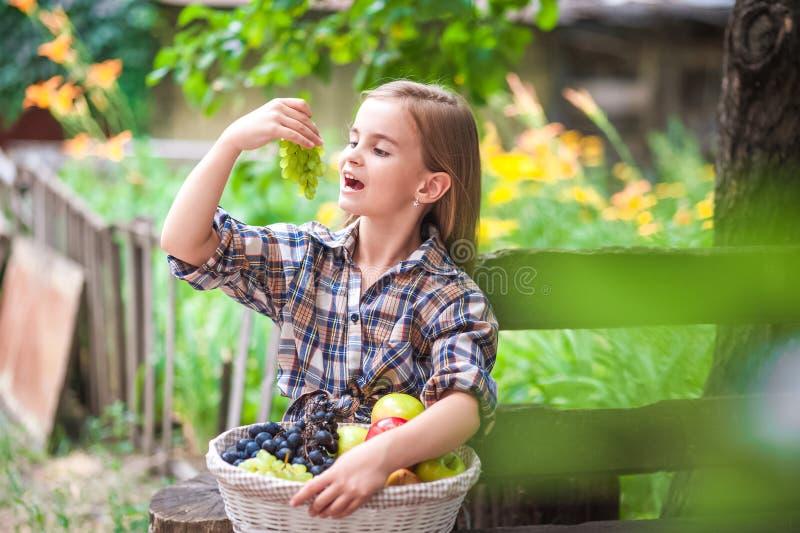 Flicka med en korg av frukt i trädgården Härlig liten bondeflicka som rymmer organiska frukter Begreppet av skördträdgården, till arkivbilder