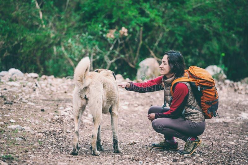 Flicka med en ryggsäck som daltar en hund arkivfoto