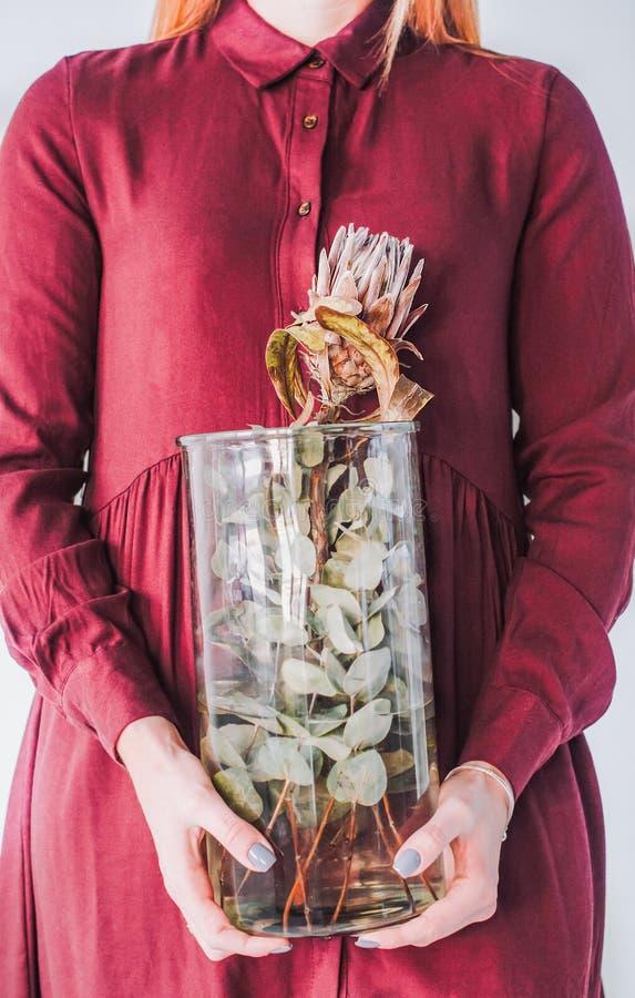 Flicka med en vas i hennes händer med en protea royaltyfri fotografi