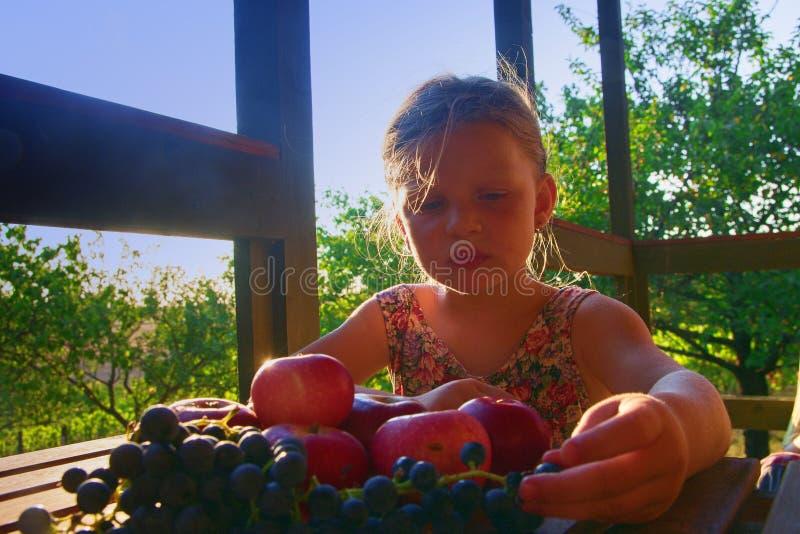 Flicka med frukt i trädgården Härlig liten bondeflicka som rymmer och äter organiska frukter, druvor, äpplen _ arkivfoto