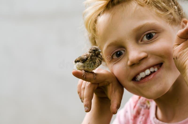 Flicka med gråsparven i mänsklig hand fotografering för bildbyråer