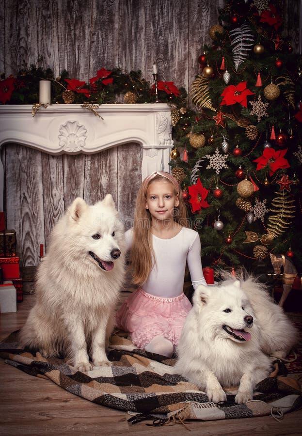 Flicka med hunden för två vit arkivfoton