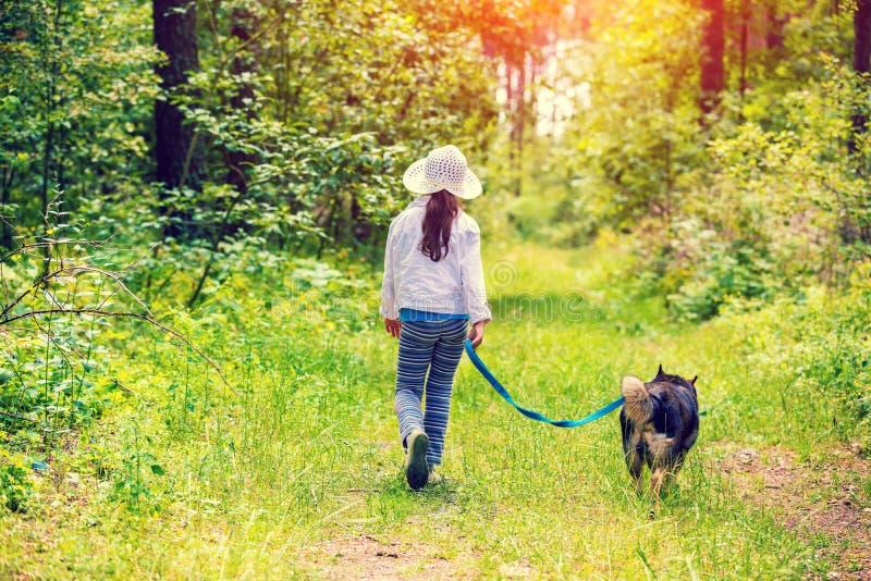Flicka med hunden som går i skogen arkivfoton