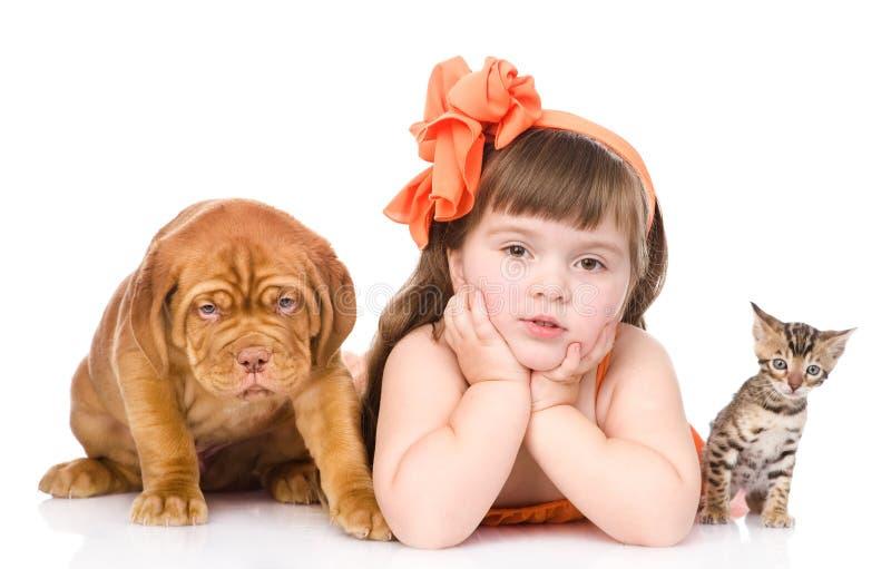 Flicka med husdjur - hund och katt bakgrund isolerad white arkivbilder