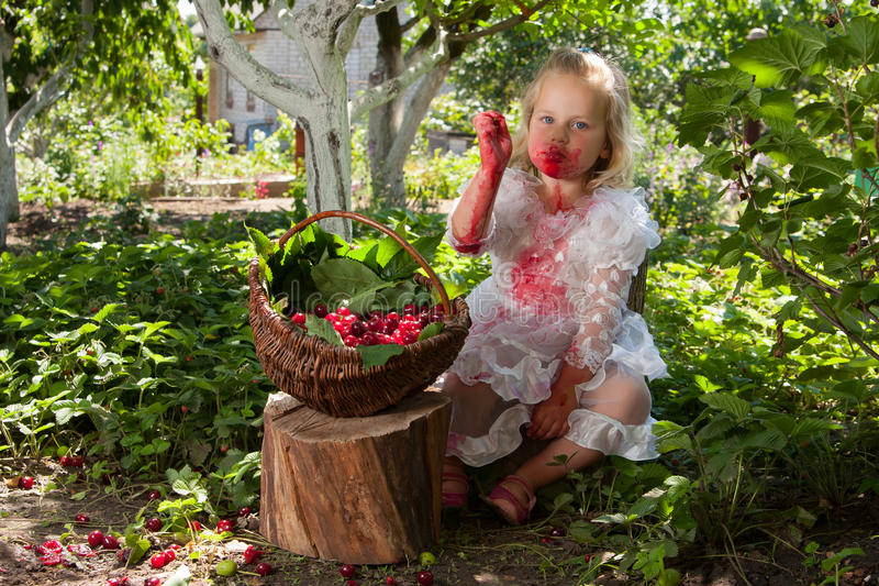 Flicka med korgen av körsbär arkivbilder