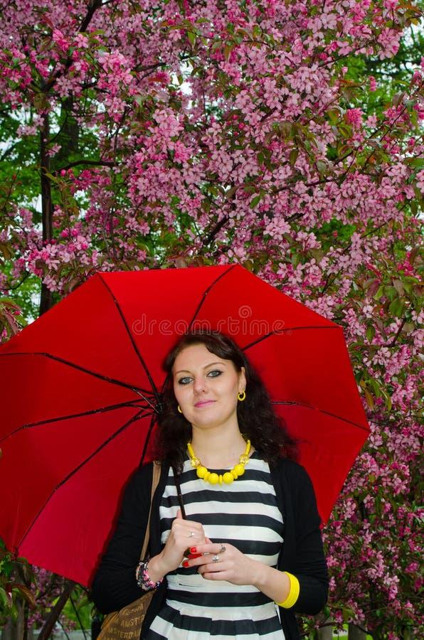 Flicka med paraplyet i de körsbärsröda blomningarna royaltyfria foton