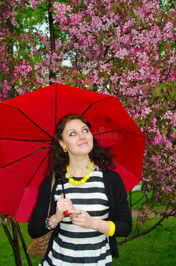 Flicka med paraplyet i de körsbärsröda blomningarna royaltyfri foto