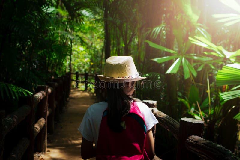 Flicka med ryggsäcken som in går till den tropiska rainforesten arkivbilder