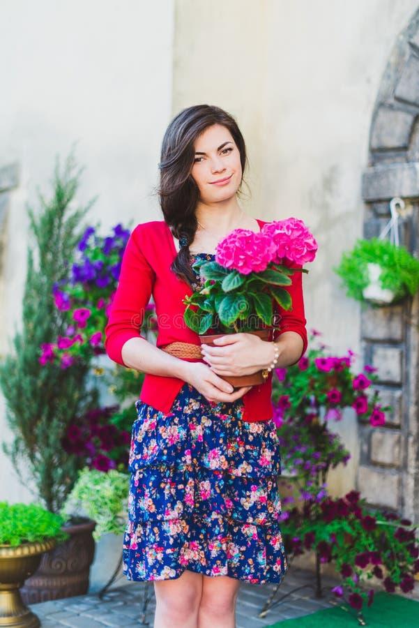 Flicka med vanlig hortensiakrukan royaltyfria foton