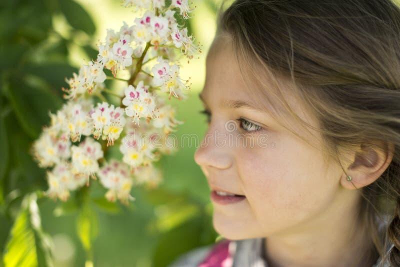 Flicka nära den blommande kastanjen arkivfoton