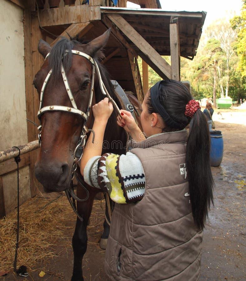 Flicka och häst royaltyfri bild
