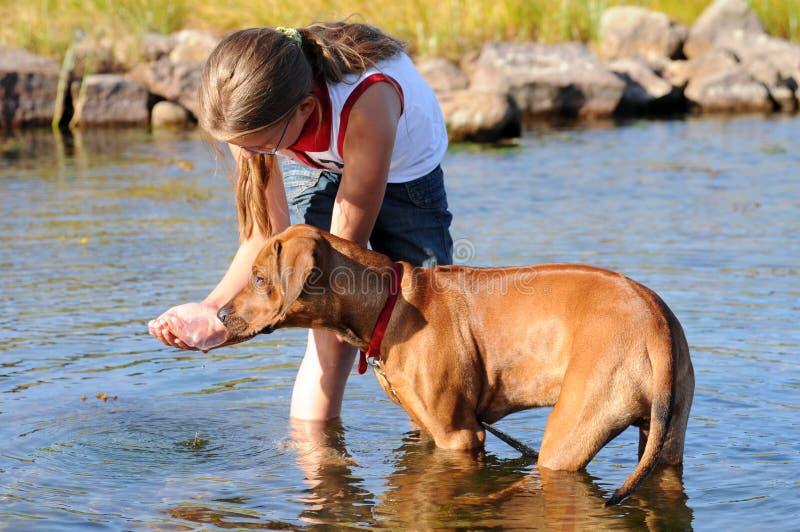 Flicka och henne hund arkivfoton