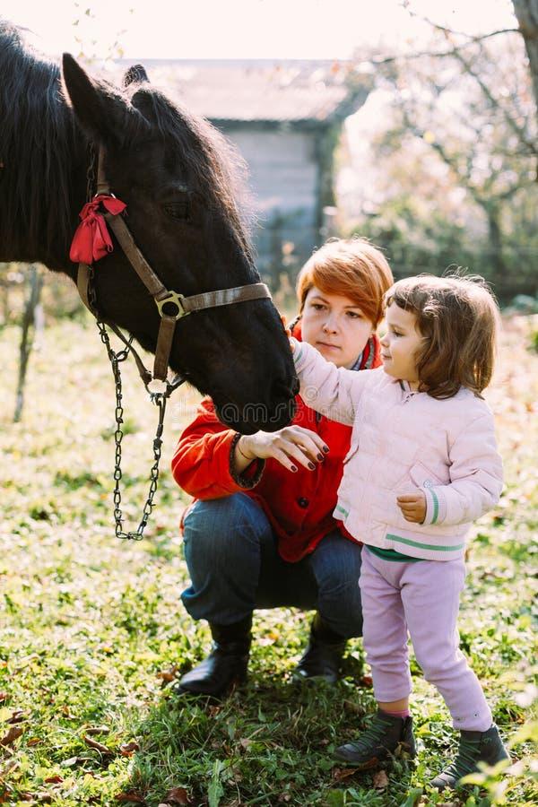 Flicka och hennes matande häst för moder arkivfoton