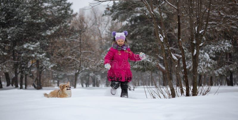 Flicka och hund arkivbild