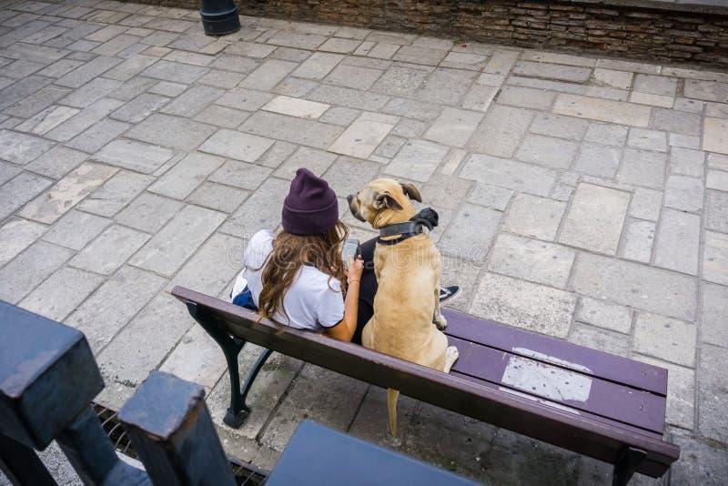 Flicka och hund på en bänk royaltyfri foto