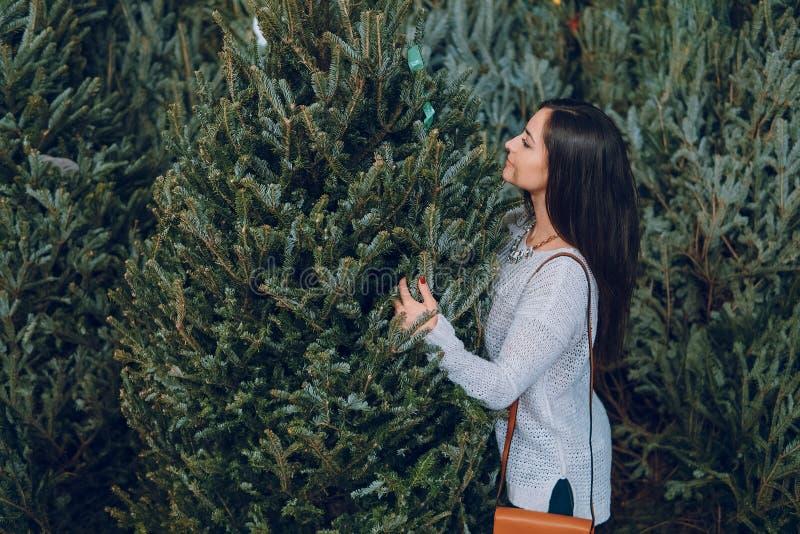 Flicka och julgran royaltyfria bilder