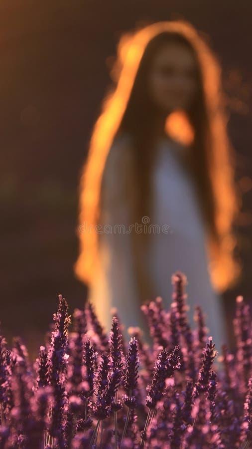 Flicka och lavendel arkivfoton