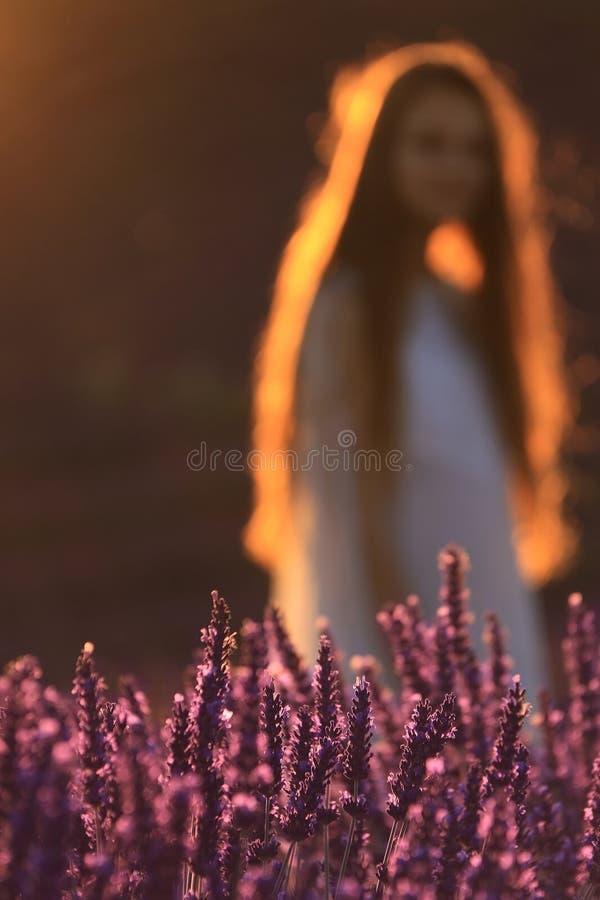 Flicka och lavendel royaltyfri foto