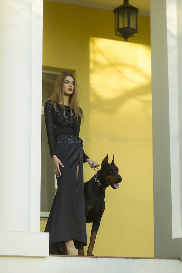 Flicka och mastiff royaltyfri bild