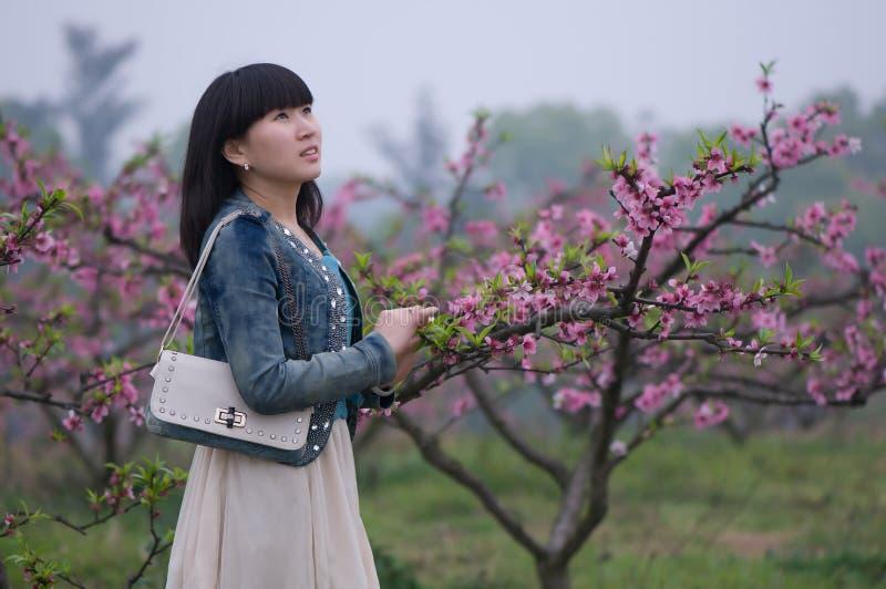 Flicka- och persikablommor arkivbild