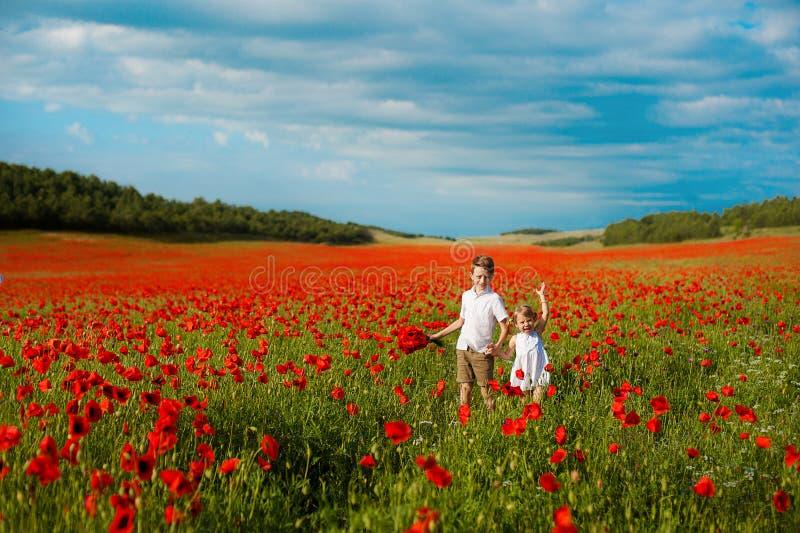 Flicka och pojke i ett fält av röda vallmo begrepp av barndom, lycka, familj royaltyfria bilder