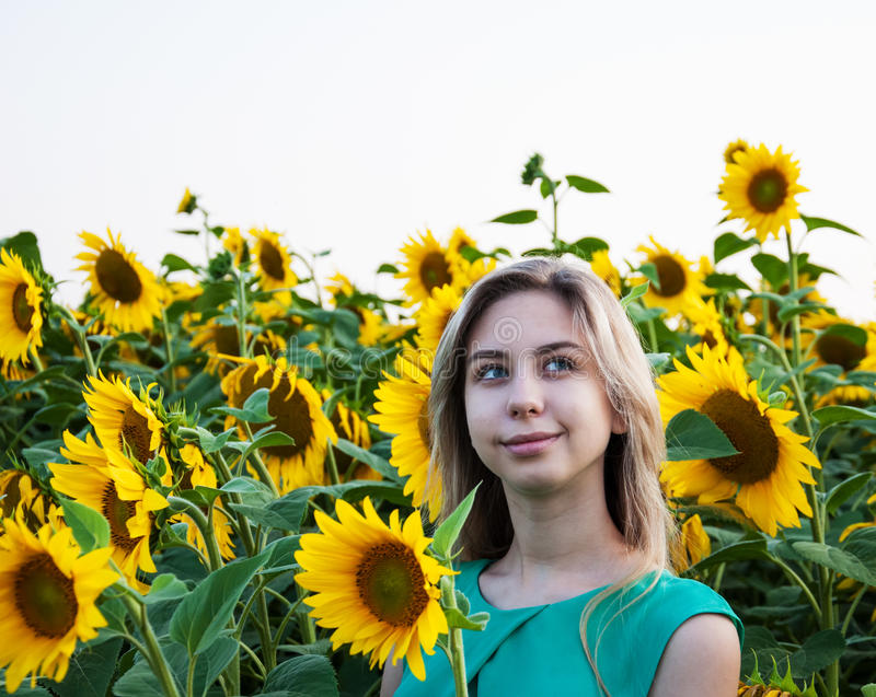Flicka på fältet av solrosor royaltyfria foton