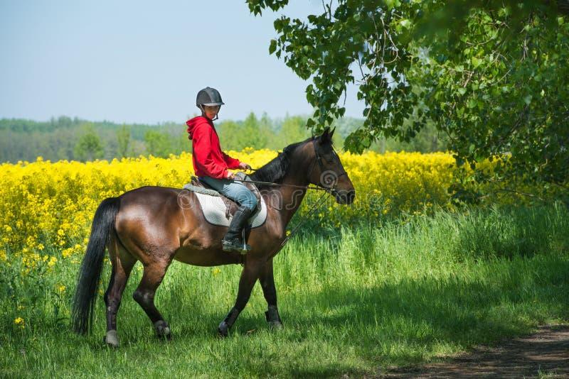 Flicka på hästryggridning royaltyfri bild