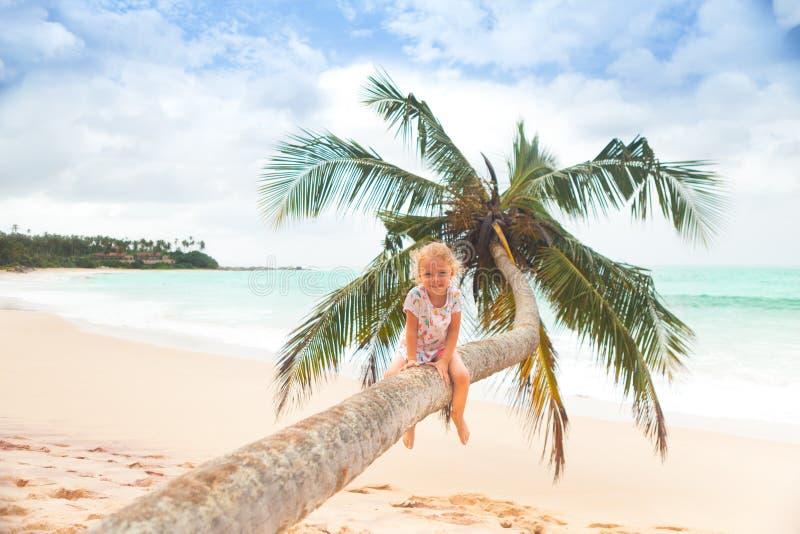 Flicka på palmträdet arkivbilder