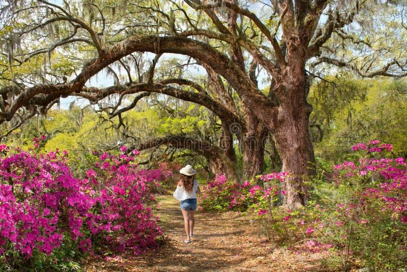 Flicka som bara går i den härliga blommande trädgården under ekar arkivfoto