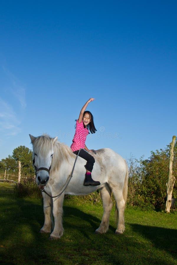 Flicka som befriar en vit häst i Danmark arkivfoton
