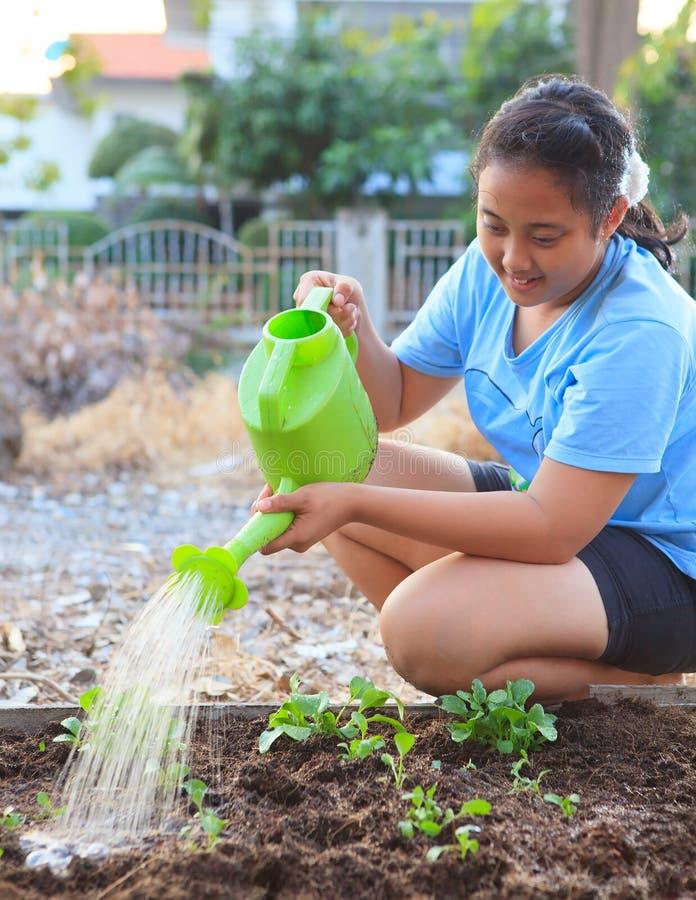 Flicka som bevattnar grönsakväxten i relaxi för familj för hemträdgårdfält arkivfoton