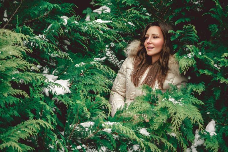 Flicka som döljas i träd fotografering för bildbyråer