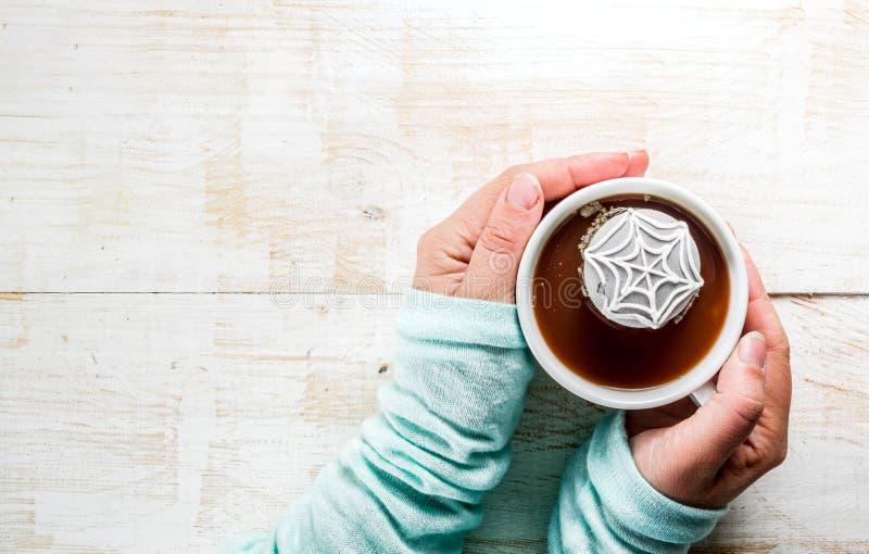 Flicka som dricker varm choklad med marshmallowen royaltyfri foto