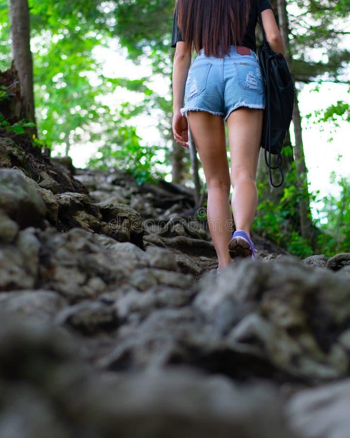 Flicka som fotvandrar i skogen arkivfoto