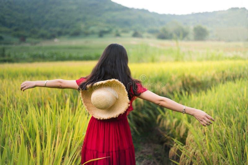 Flicka som går i en risfält som bär den röda klänningen arkivfoto