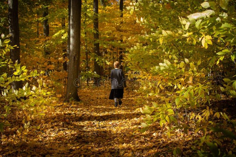 Flicka som går på banan av nedgångsidor royaltyfria foton